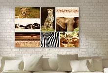 Salon con foto lienzo collage ejemplo animales salvajes