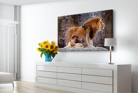 Salon foto lienzo ejemplo leon con cachorro