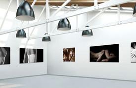 Vista galeria para empresas o artistas